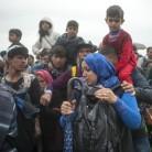 ¿Cómo puedes ayudar a los refugiados?