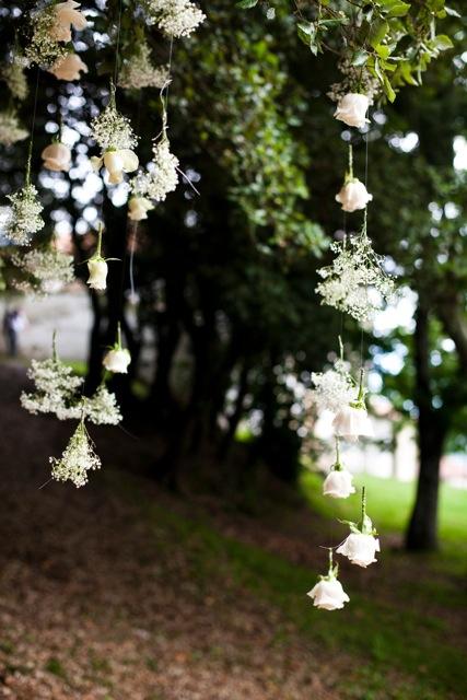 las rosas blancas con paniculata que colgaban de los árboles - TELVA