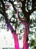 15 ideas para una boda ibicenca - 15