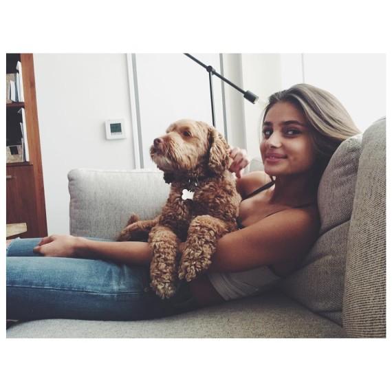 Amores perros que nos encantan