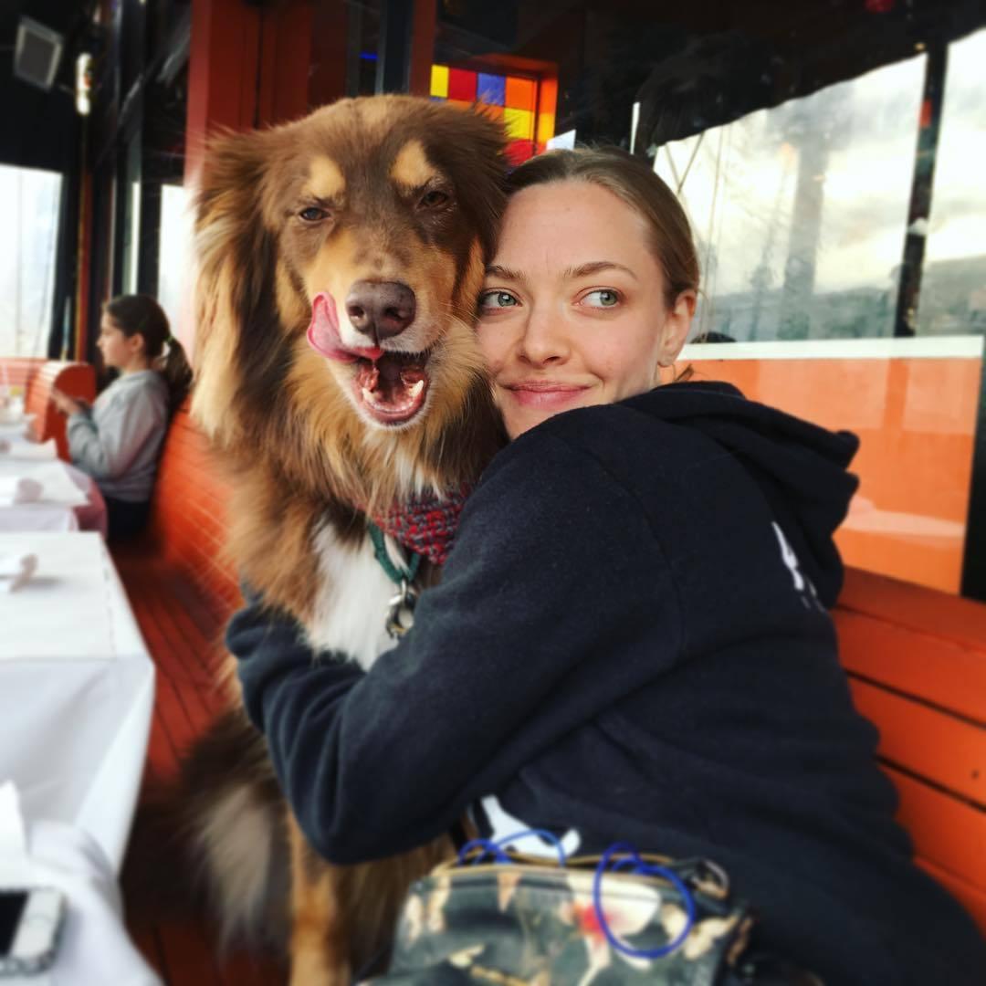 Amanda Seyfried y su perro Finn.