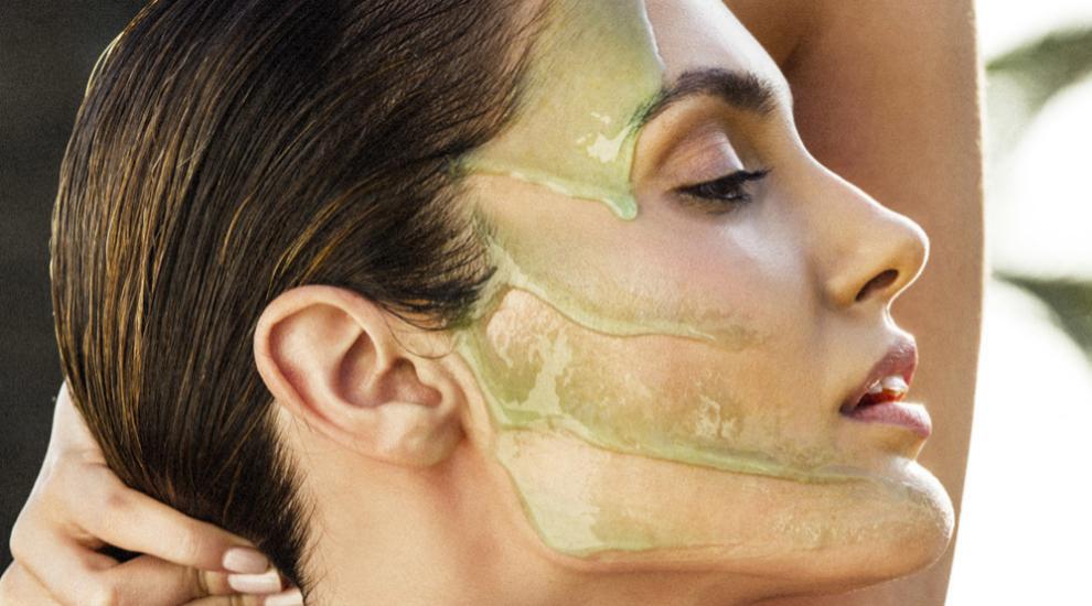 Descubre algunas de las mejores plantas que cambiarán  tu piel y tu...