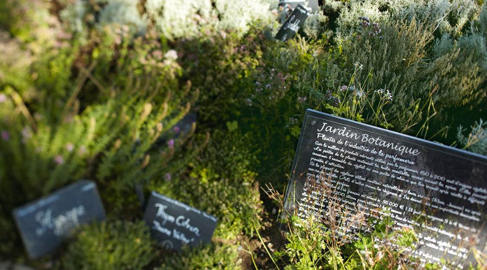 La firma cuenta con un jardín botánico donde se reúnen expertos en...