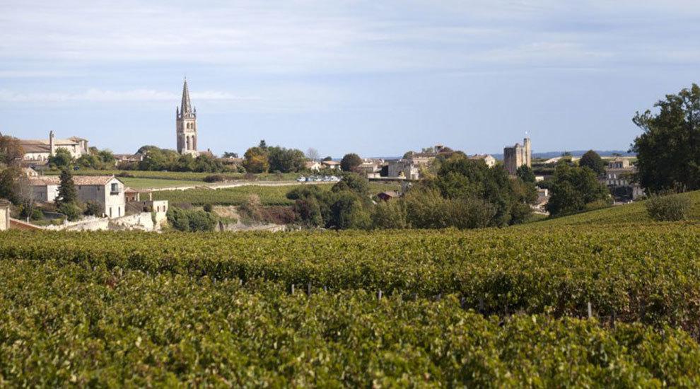 Sus viñedos fueron inscritos al Patrimonio Mundial de la Humanidad...