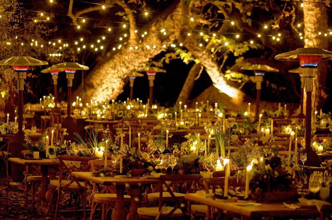 Todo el banquete de la boda fue al aire libre y entre árboles.