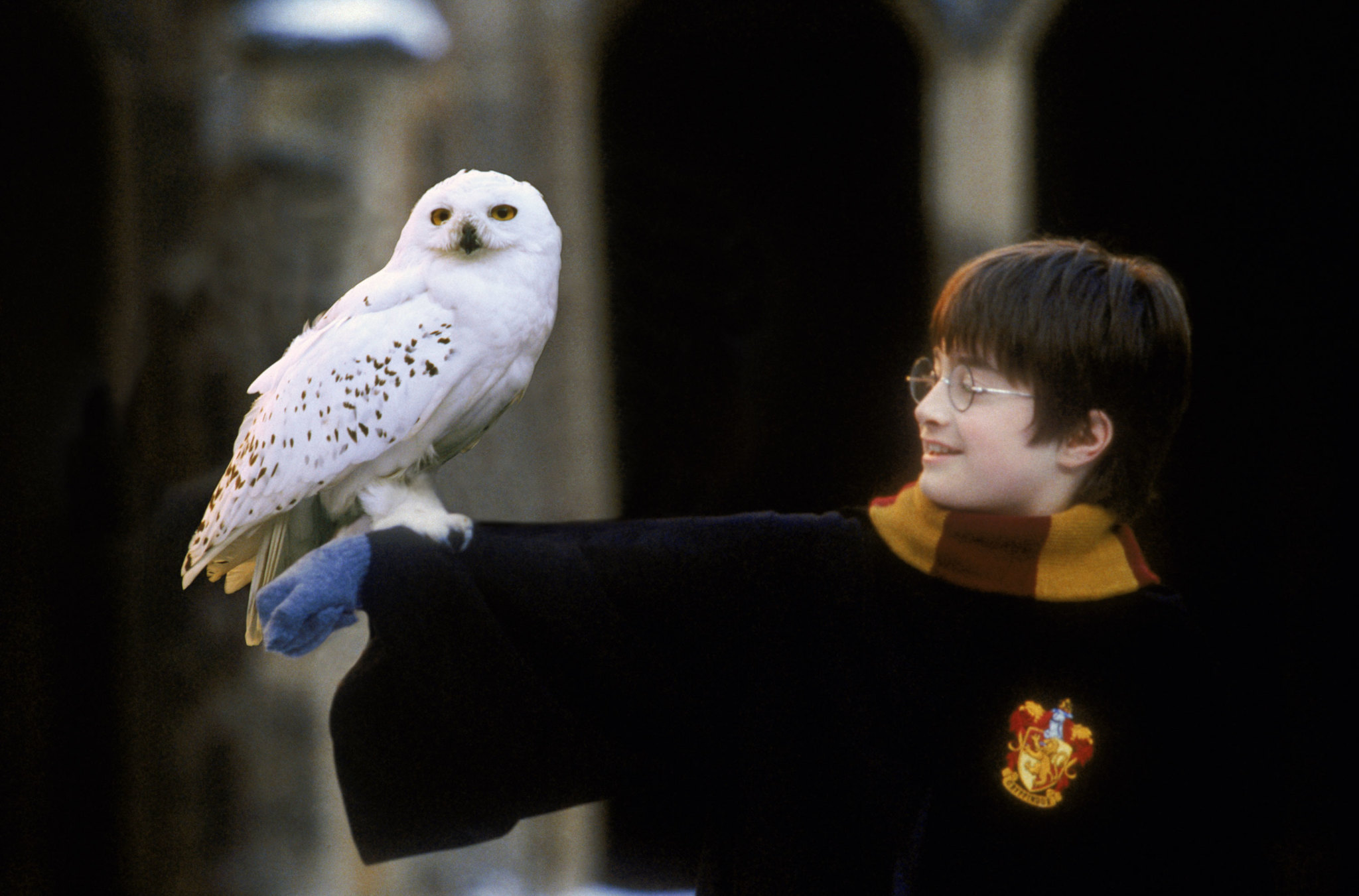Harry Potter y la Piedra Filosofal, en concierto.