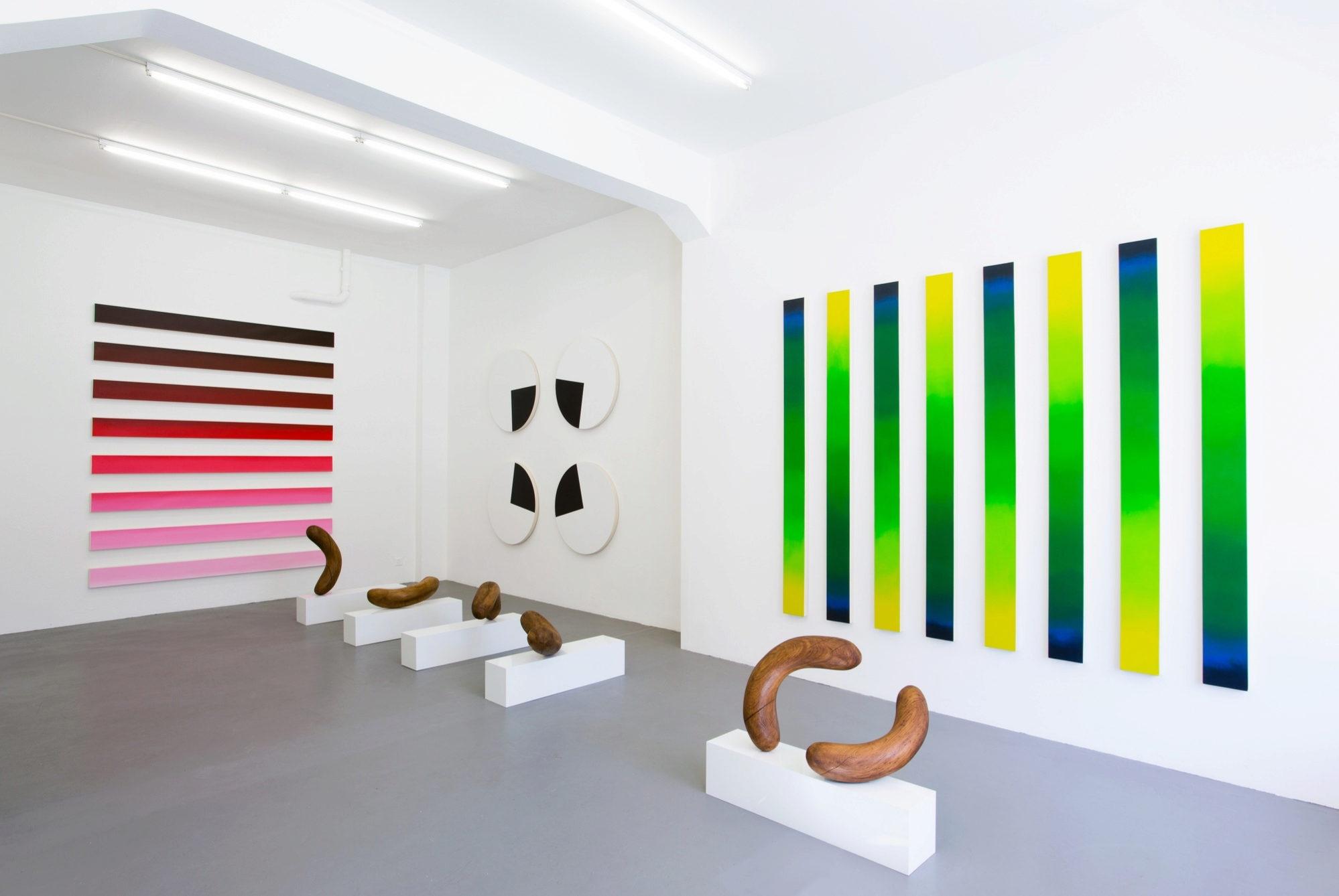 La obra de Claudia Comte es un obligatorio para este 2017.