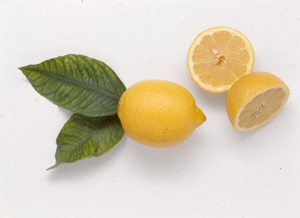 Agua con limon perdida de peso estudios