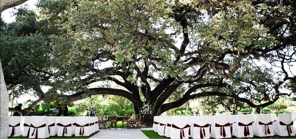 Las ceremonias al aire libre y rodeadas de vegetación siempre son una...