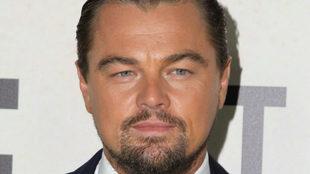 Leonardo DiCaprio en 2016