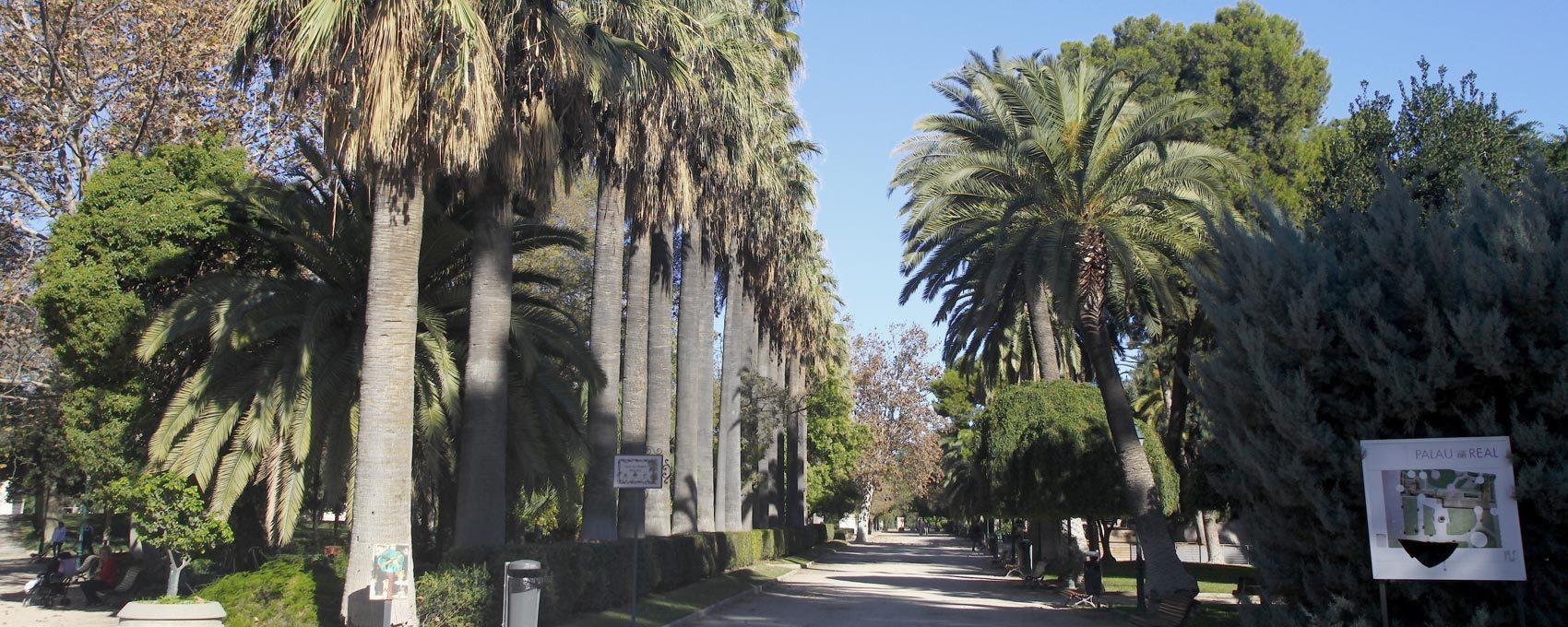 Jardín del Real