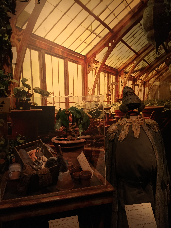 Túnica de la profesora de Herbología, Pomona Sprout, junto a...