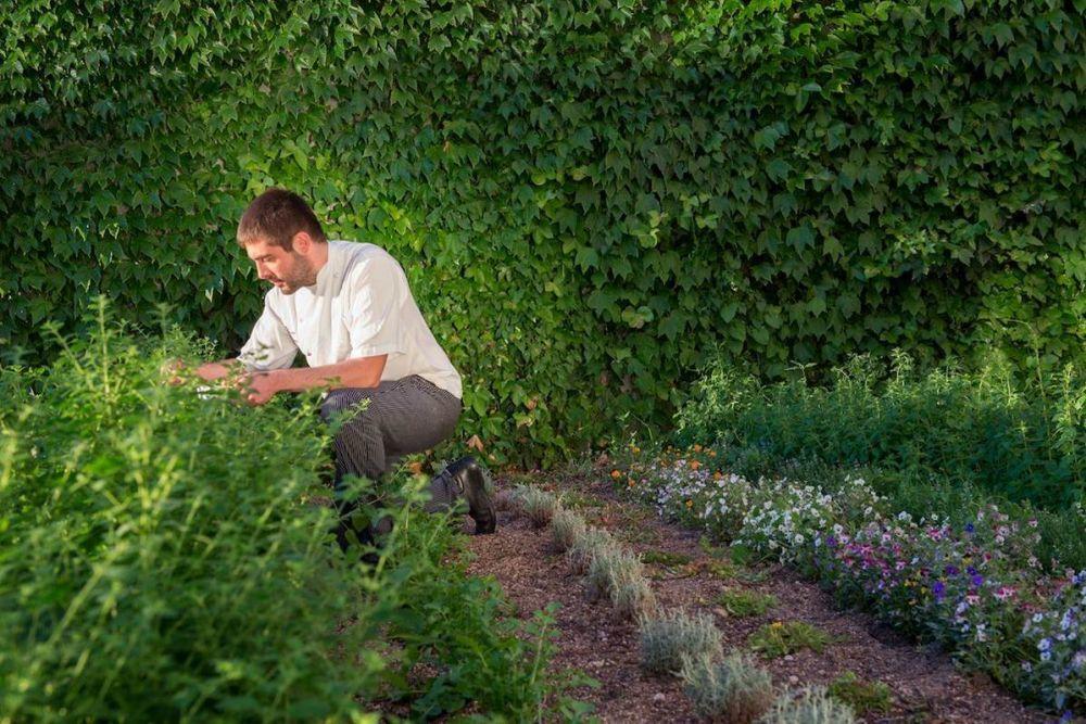 Leandro Gil en su huerto de hierbas aromáticas.
