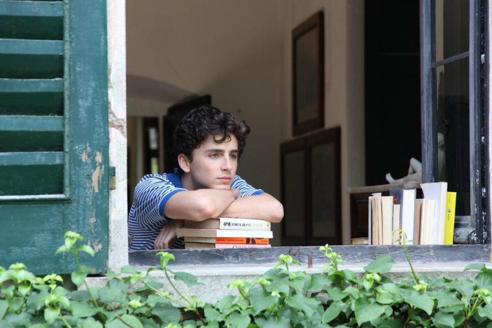 El actor Thimothée Chalamet.