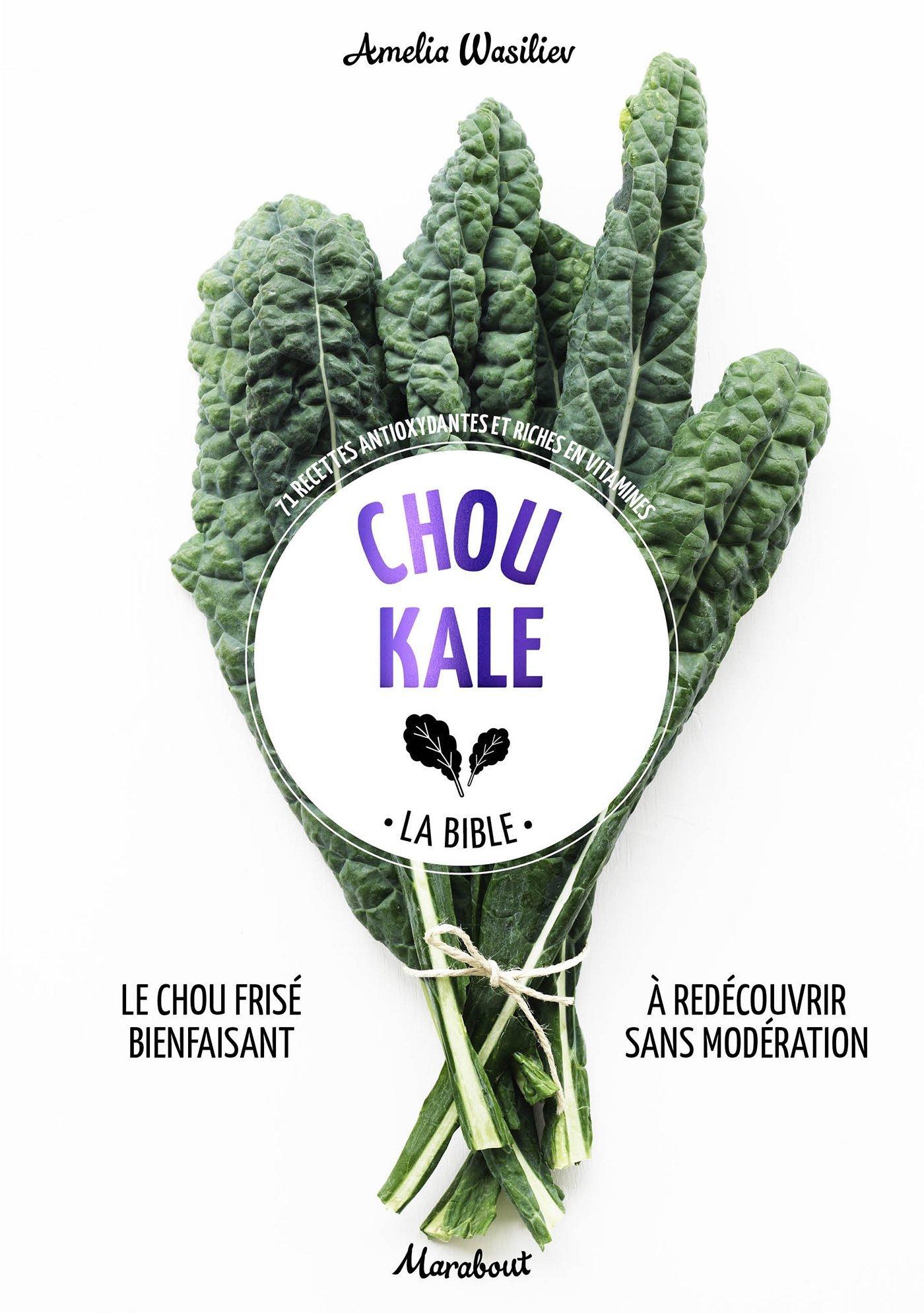 """Libro de Amelia Wasiliev, """"Kale 69 recetas antioxidantes y ricas en..."""