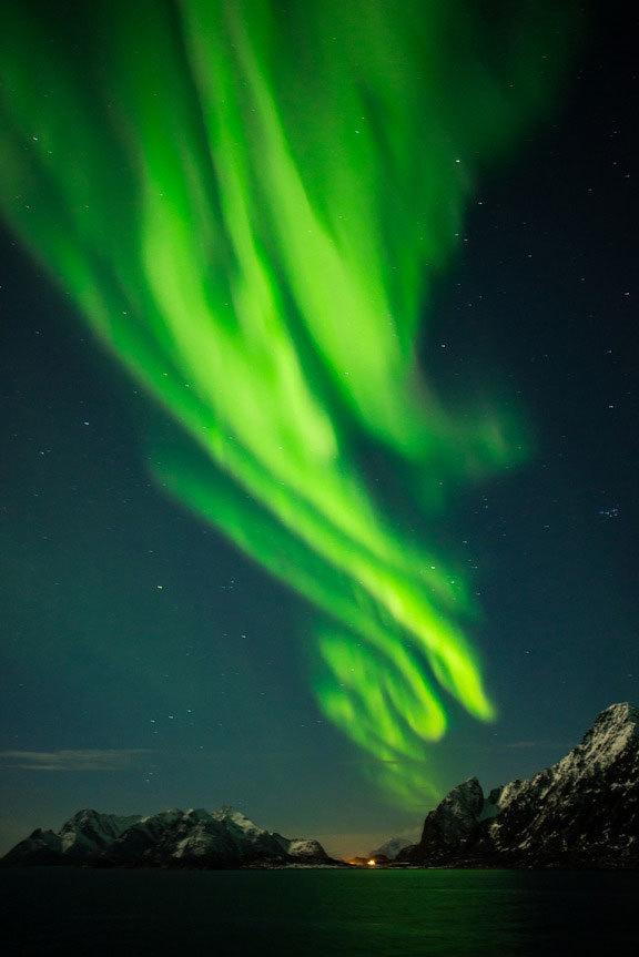 En los cruceros por Noruega junto a Hurtigruten podrás capturar...