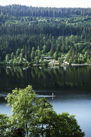 El lago Titisee, convertido en un espejo del bosque de coníferas de...