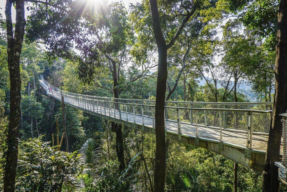 Puente en Penang Hill, la colina con vistas sobre la isla.