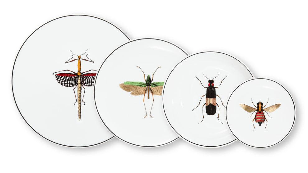 Pronto, estos insectos no solo serán una ilustración en tu plato....