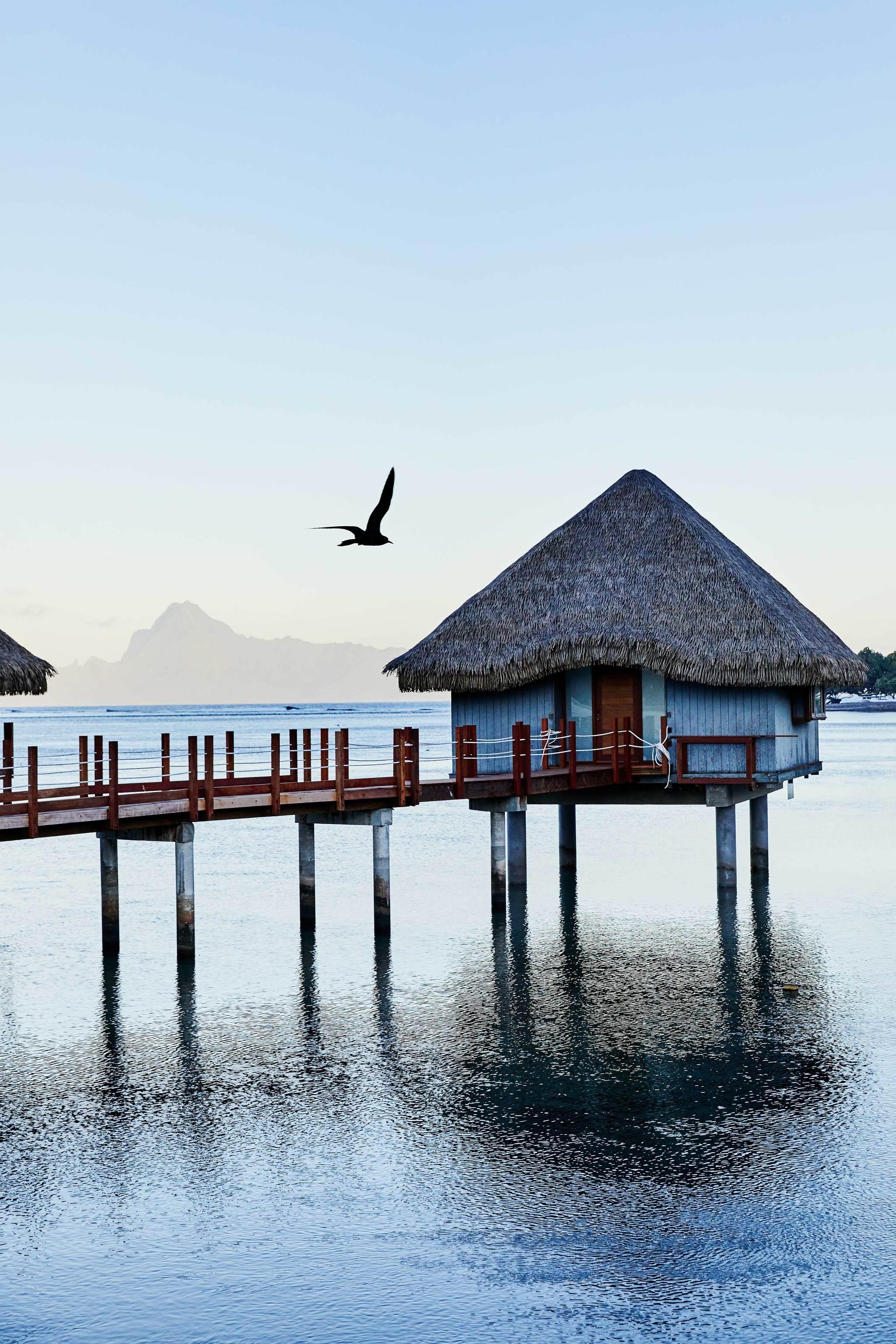 Vista desde el hotel LE TAHITI IA ORA BEACH RESORT BY SOFITEL