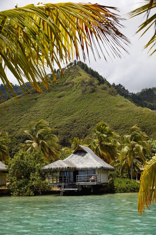 La isla de Moorea es un refugio para muchos artistas.