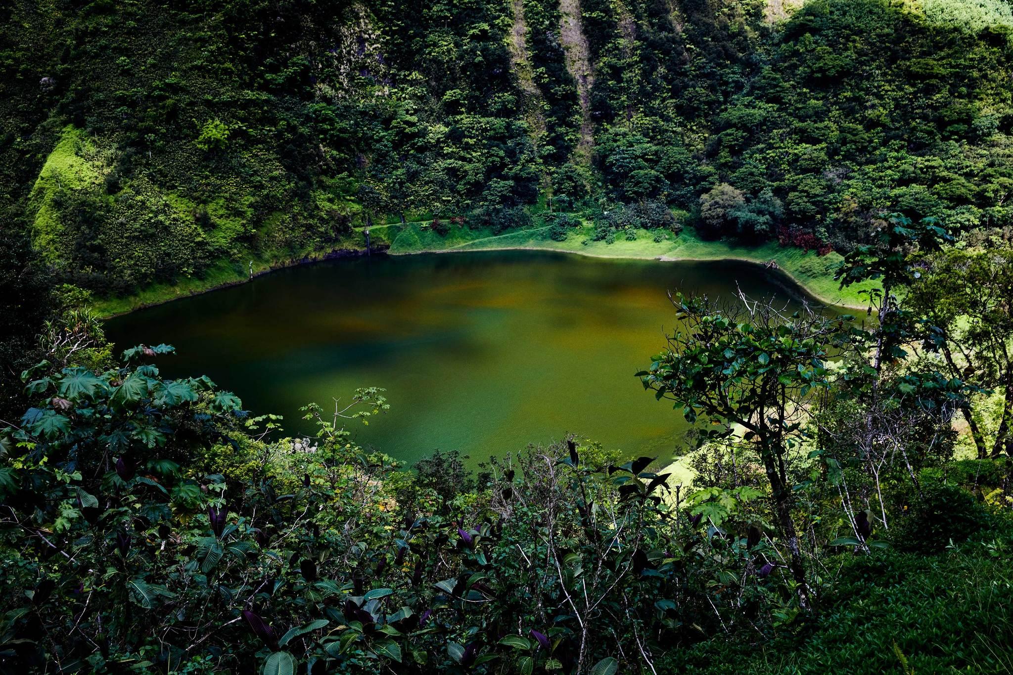 Hasta el interior selvático de Tahití, sólo es posible llegar en...