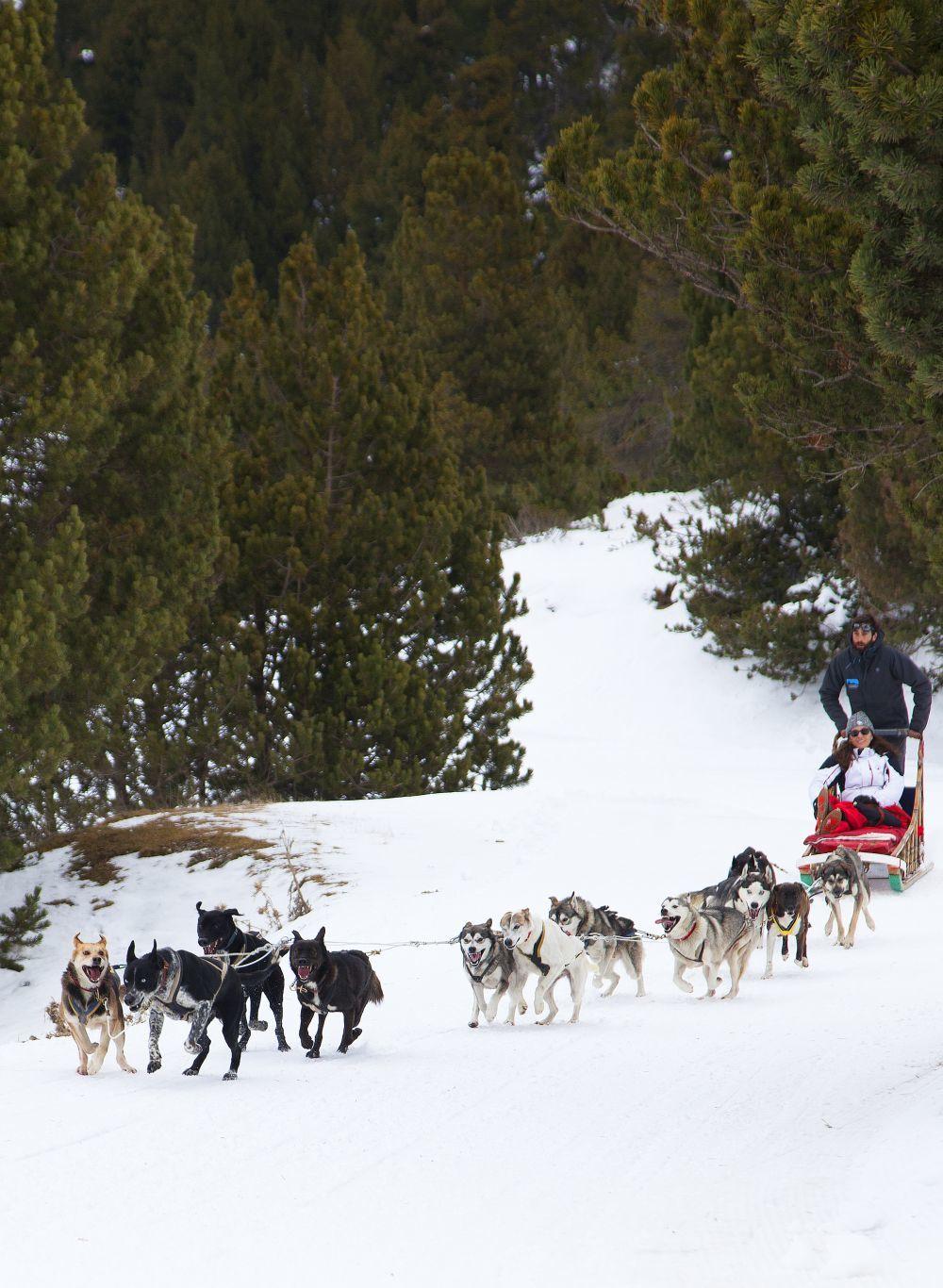 Las excursiones con trineo de perros y motos de nieve al santuario de...