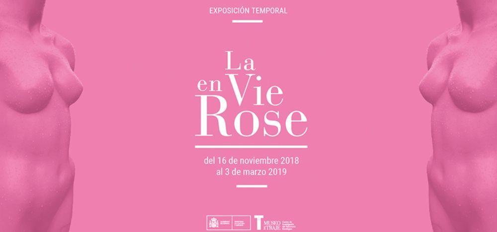 La exposición explora los prejuicios del color rosa.