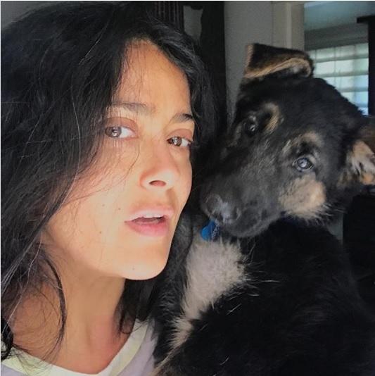 Salma Hayek posa en su Instagram sin maquilleje y luciendo canas.