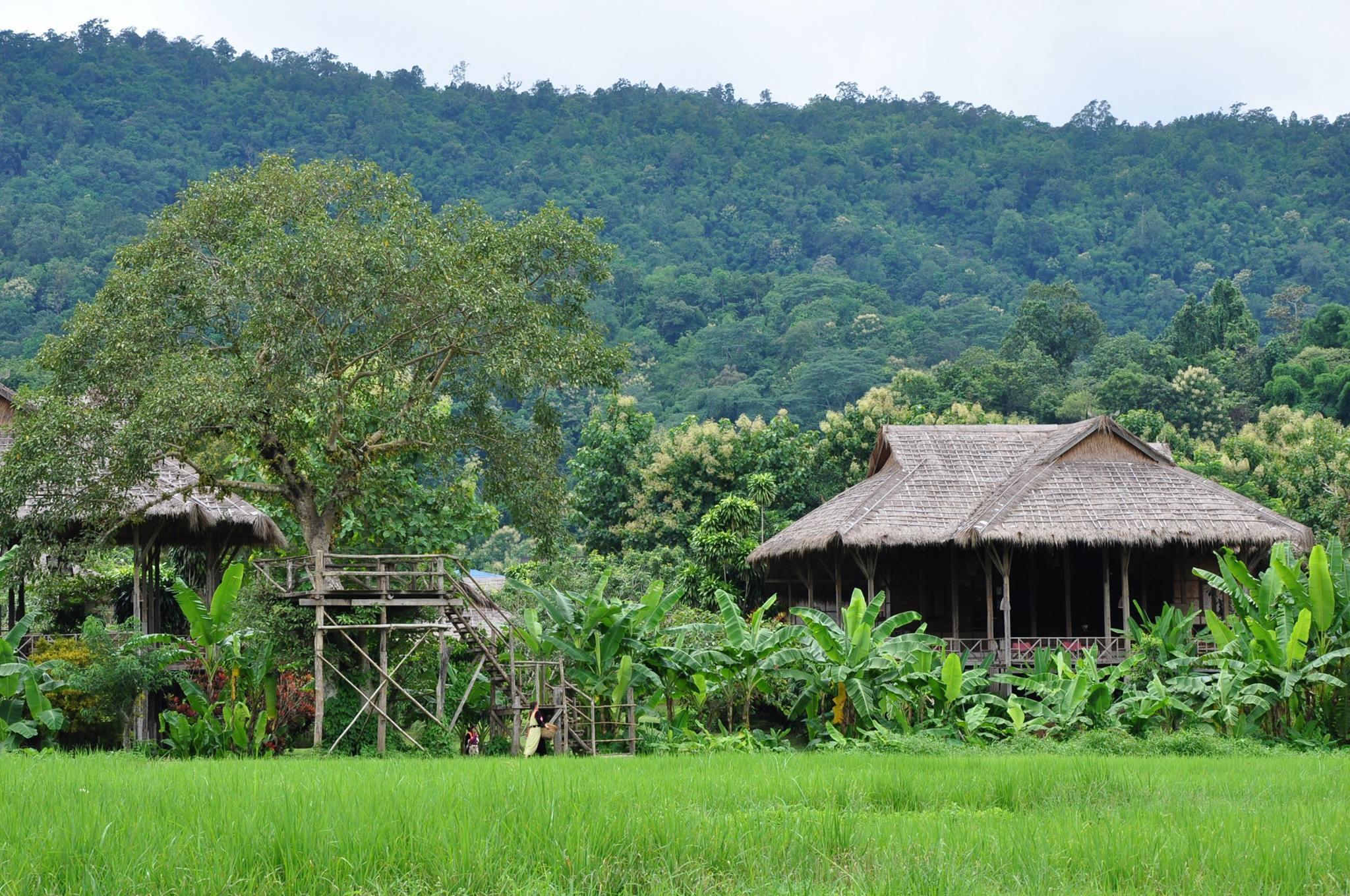 Dormir en una cabaña en medio de los arrozales de Mae Taeng es la...