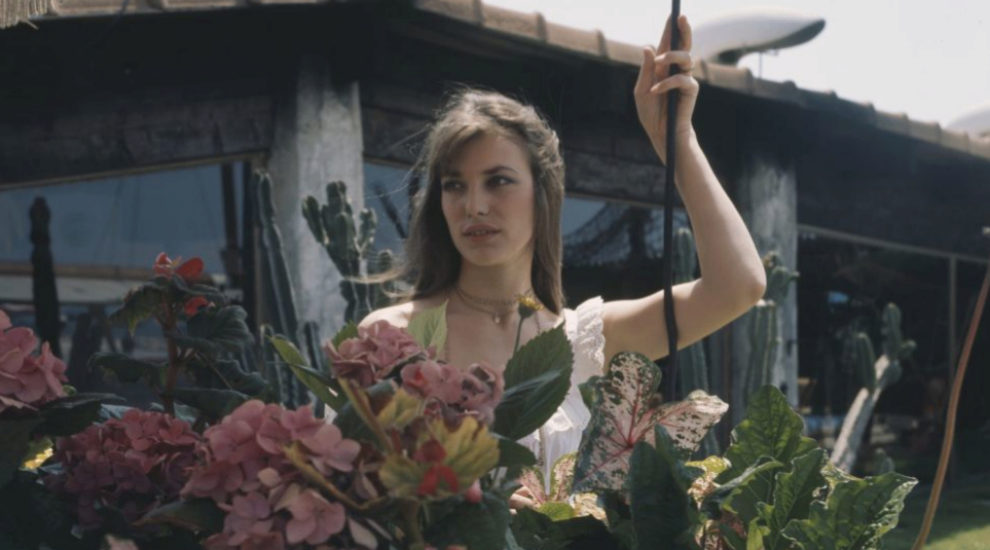 Jane Birkin tras unos rosales