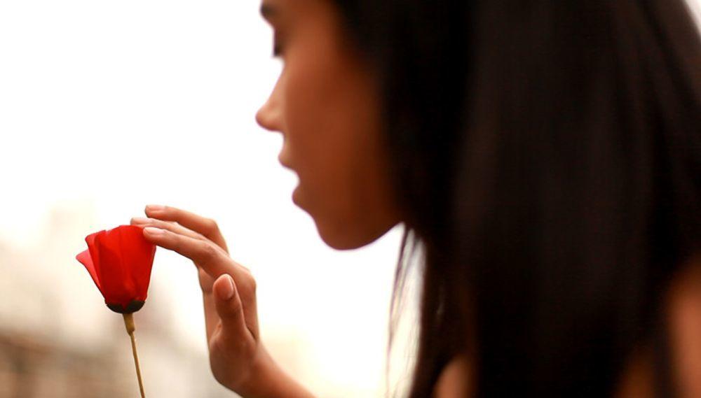 La amapola simboliza la positividad y embellece el mundo creciendo...