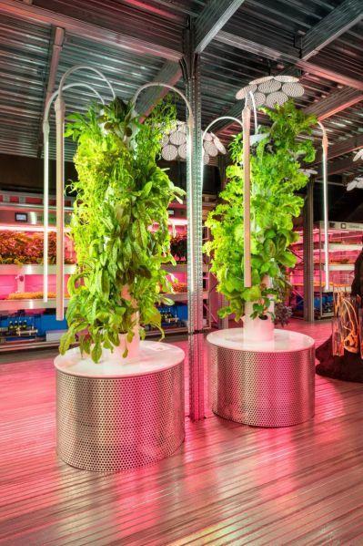 Prototipo del huerto vertical ideado por Tom Dixon para Ikea