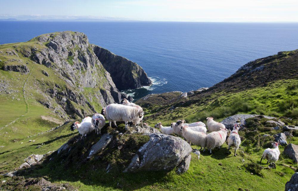Los Slieve League Cliffs