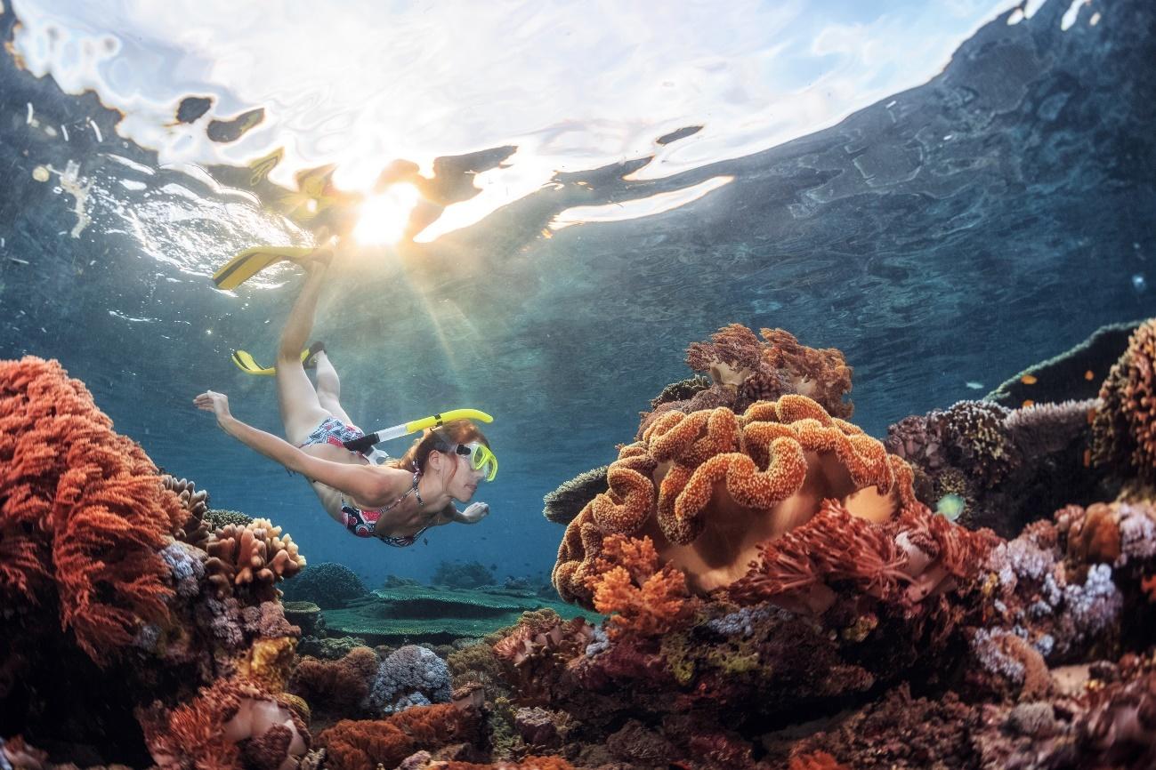 Snorkel en Pemuteran