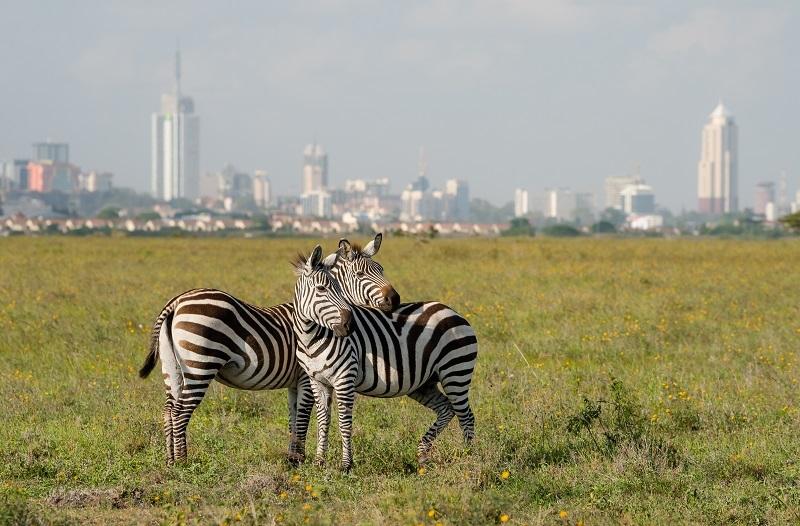 Nariobi, en Kenia.