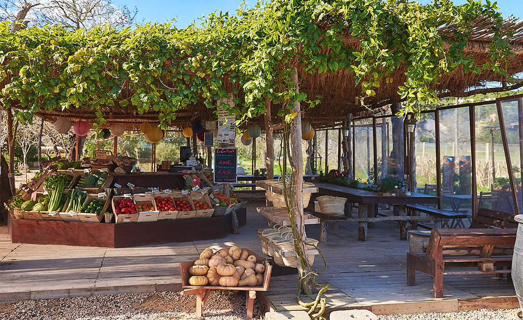 Can Muson granja y huerto ecológico, Es Coloms, 98, Ibiza.