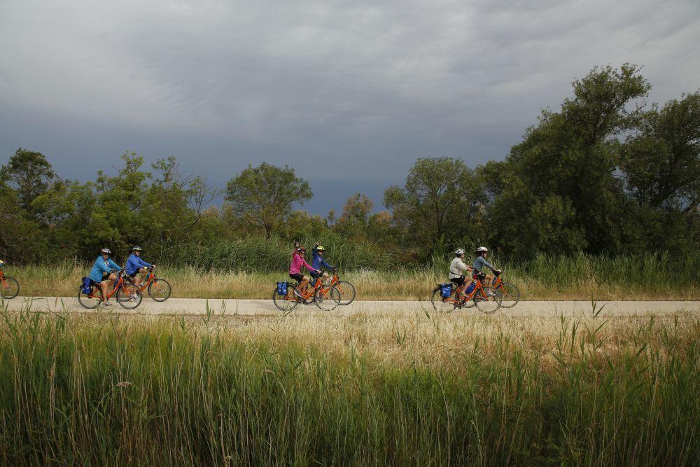 Excursiones en bicicleta por la Camarga para descubrir la naturaleza