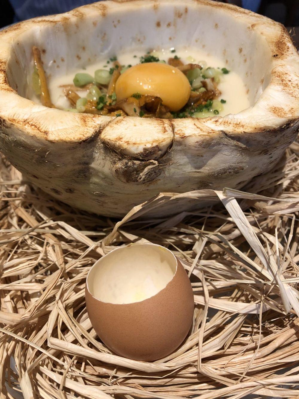 Apionabo, huevo, rebozuelo