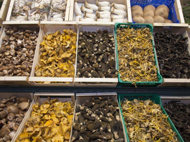 Bolets Petrás, en el Mercado de la Boquería