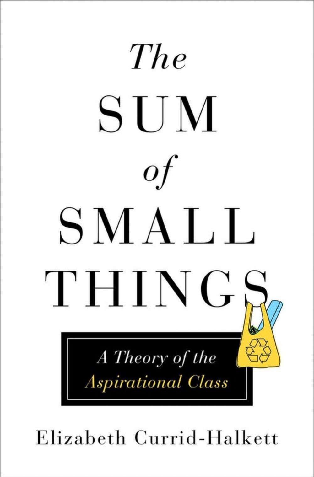 The Sum of Small Things: A theory of an Aspirational Class
