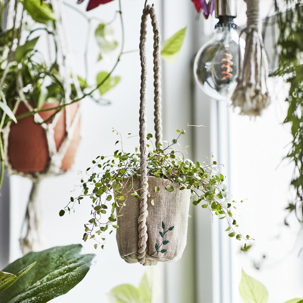 Planta colgante de Ikea