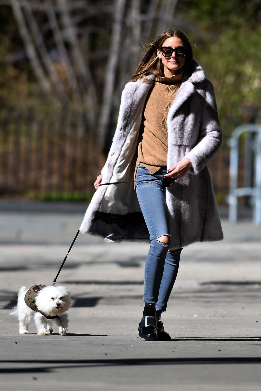 Olivia Palermo junto a su perro.