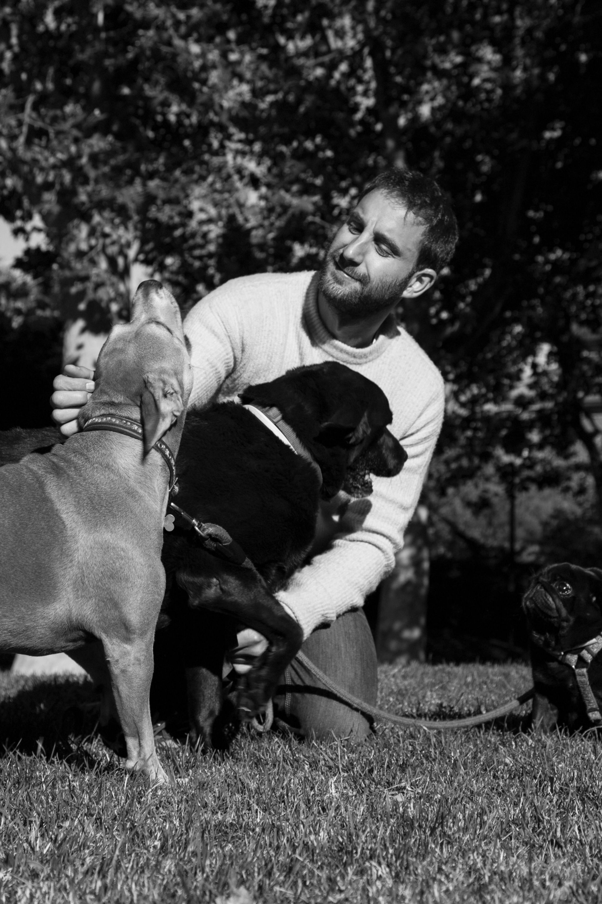 Dani Rovira con sus perros