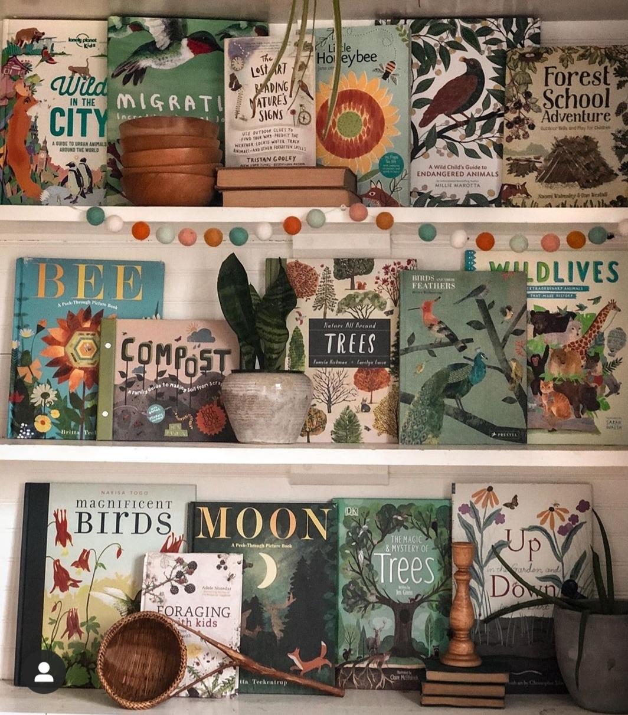 Crea una completa biblioteca con bellos libros que inviten a aprender....