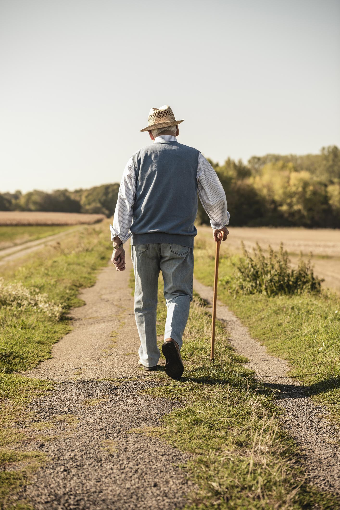 El paseo debe ser corto, fácil y seguro. Foto Getty.