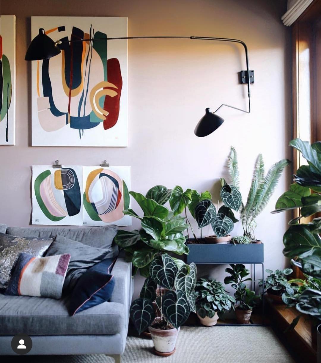 En el SALÓN, elige plantas de interior como la Sanseveria, la Pilea...
