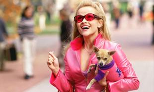 Elle Woods (Reese Witherspoon), la joven más popular del instituto,...