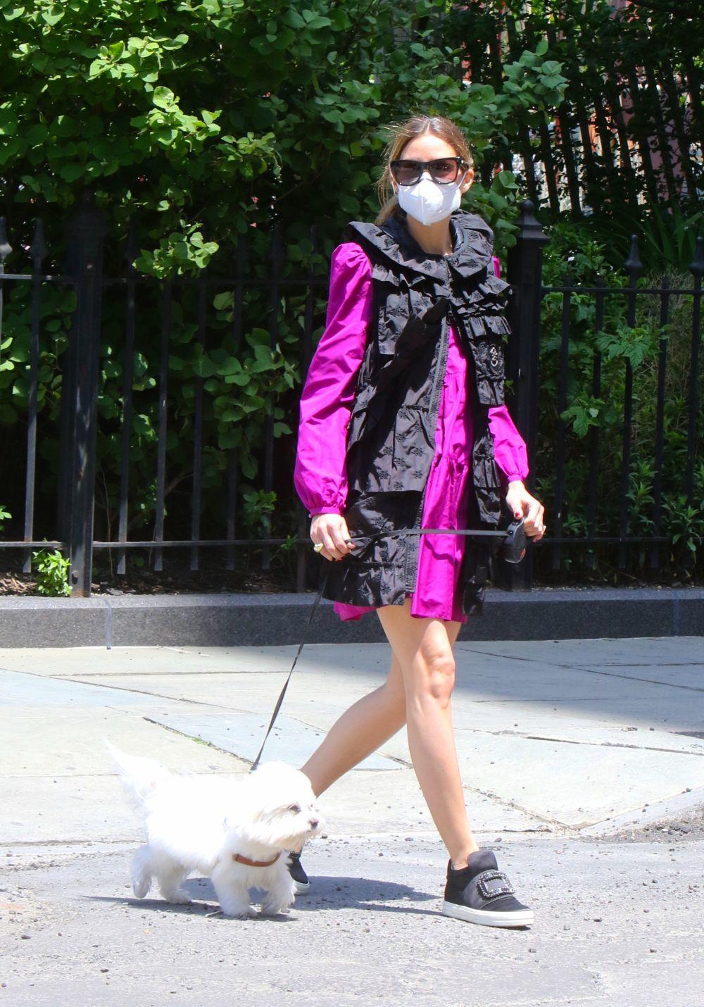 Olivia Palermo, con mascarilla, pasea a su perro