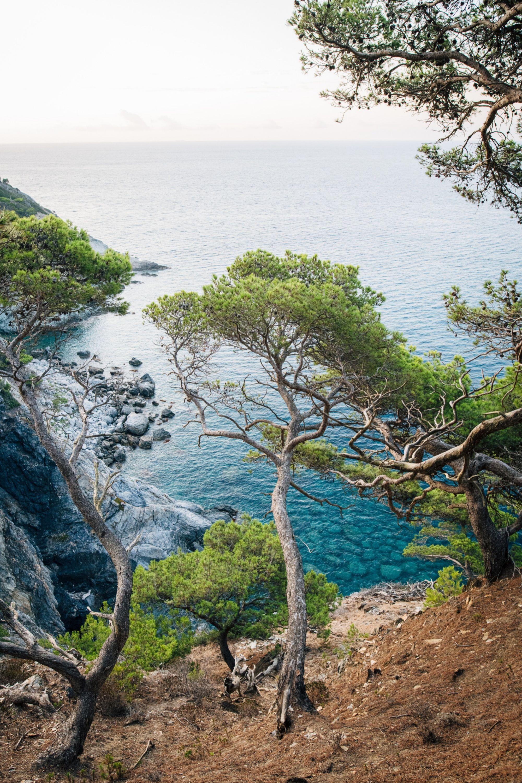 La isla de Porquerolles.